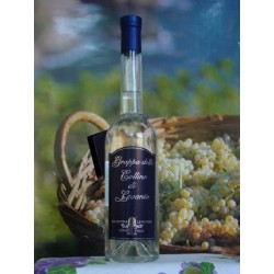 GRAPPA DI LEVANTO cl. 50